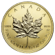 CANADIAN GOLD MAPLE LEAF 1/2 OZ COMMON DATE