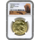 2015 1 OZ American Gold Buffalo First Day of Issue MS-70 NGC
