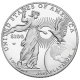 2015 Platinum Proof Single Year Design